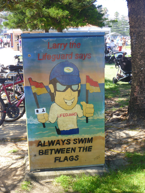 Larry the Lifeguard: Always Swim Between the Flags!