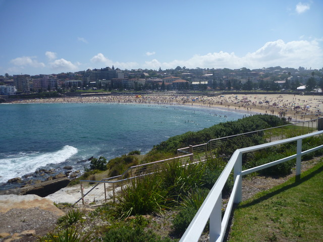 Overlooking Coogee Beach