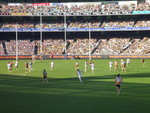 The Hawthorn Hawks and the Geelong Cats