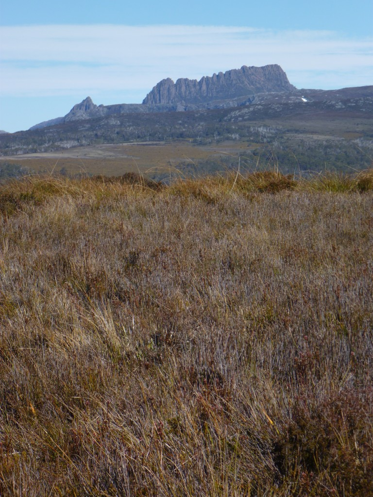 Cradle Mountain from our quad bike trip