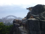 Sydney's Taronga Zoo - March 2012
